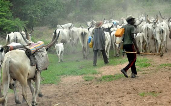 fulani herdsmen 2