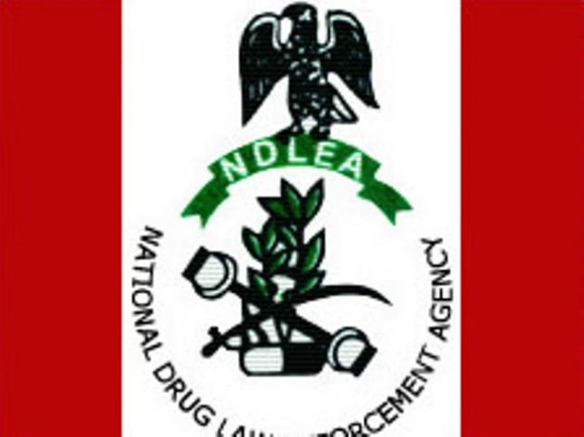 NDLEA_logo
