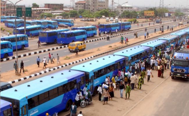 BRT BUSES
