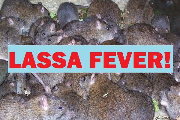 Lassa-Fever3